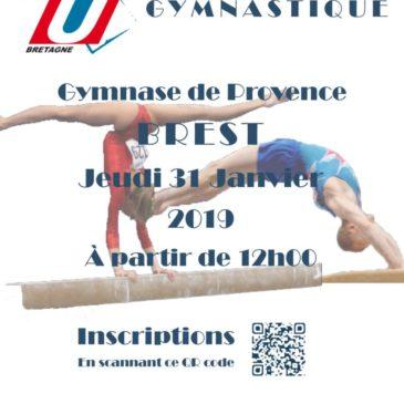 Championnat de conférence de gym artistique